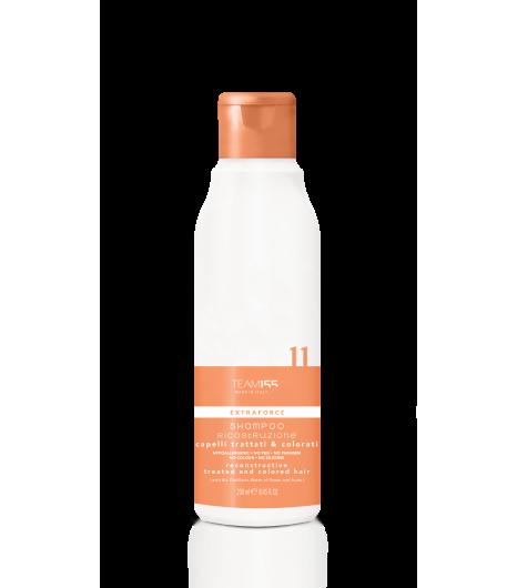 Відновлювальний шампунь для сухого і пошкодженого волосся TEAM 155 Extraforce 11 Shampoo Treated And Colored Hair - 1